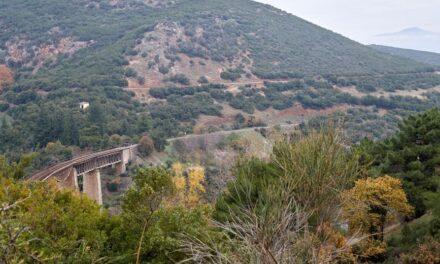 Ο Γοργοπόταμος στην Αλαμάνα…